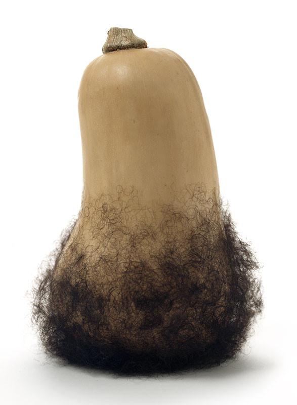 Bearded Butternut