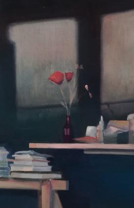coquelicot-poppy-flower-light-lumiere-mi