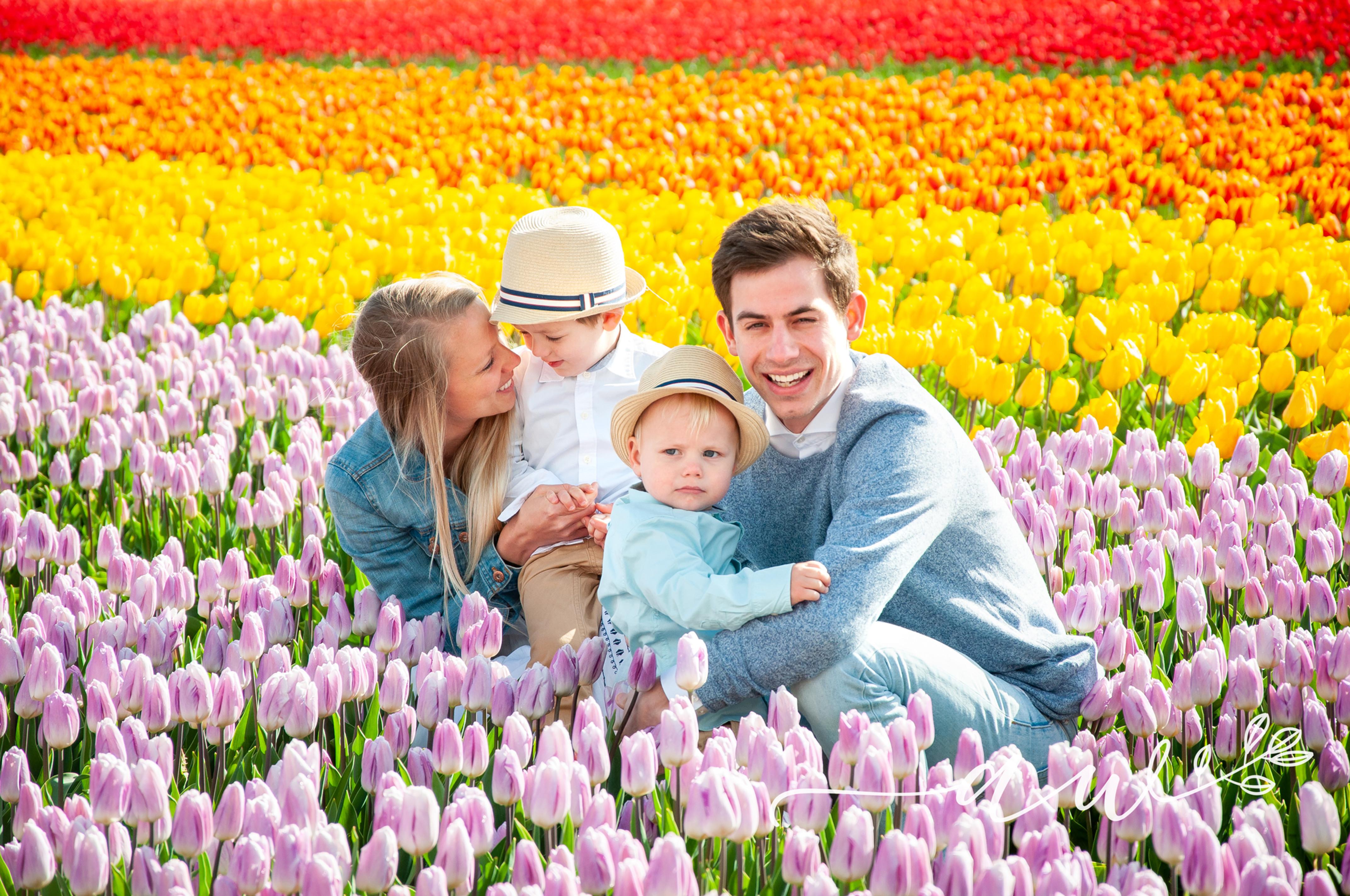 Tulip Mini-Session