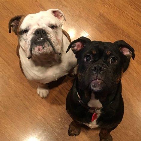 Charlie & Goober