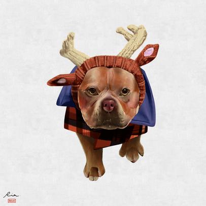 Reindeer Doggo