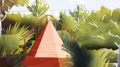 School Wetland - Environment Concept