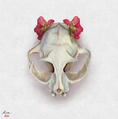 Cat Skull & Itoh Peony