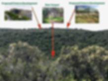 Preserve Deer Canyon Demo.jpg