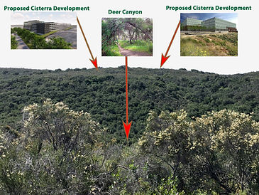 Preserve Deer Canyon Demo.jpg