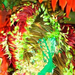 Carnivale I Amazonia