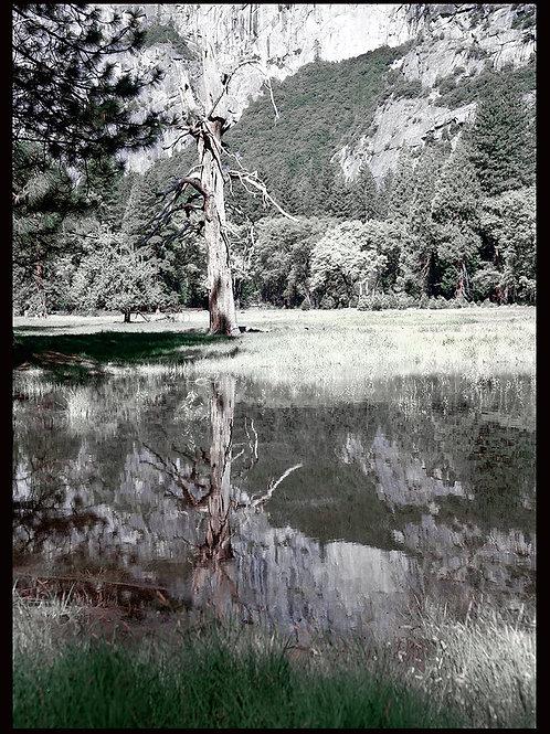 Yosemite Two Tone