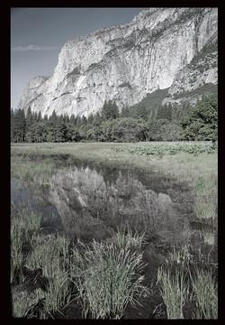 Yosemite Reflects
