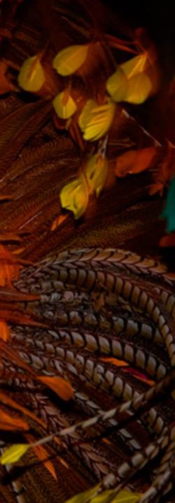 Carnivale III Amazonia