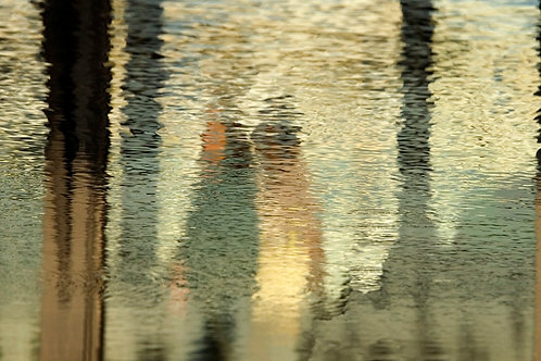 Reflections Paris