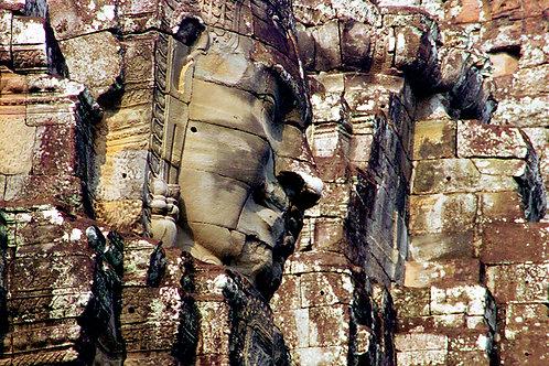 Angkor Braque