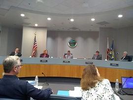 City council 2.jpg