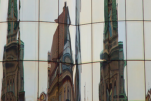 Vienna Reflects