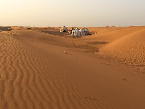 Camp Sahara