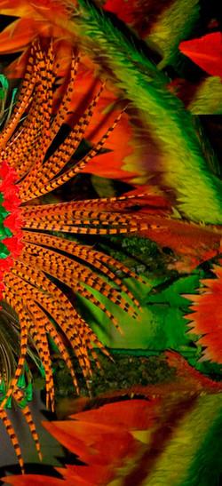 Carnivale II Amazonia