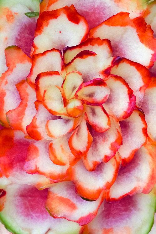 Fernando's Flowers I