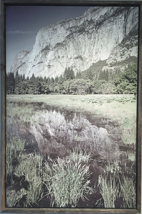 Yosemite Reflects