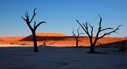 Dune Sossusvlei