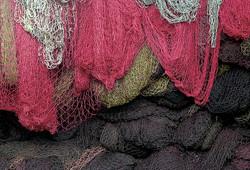 Nets Marooned