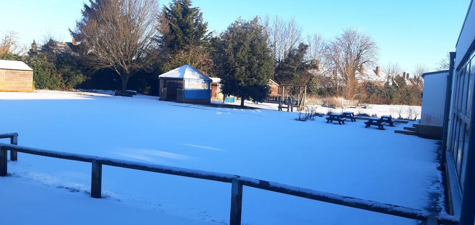 snow jan 2021 5.jpg