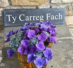 Services available at Ty Carreg Fach, holiday rental in Cardiff