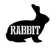 rabbit-2019.JPG