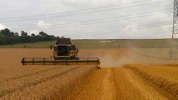 Combe Farming Partnership