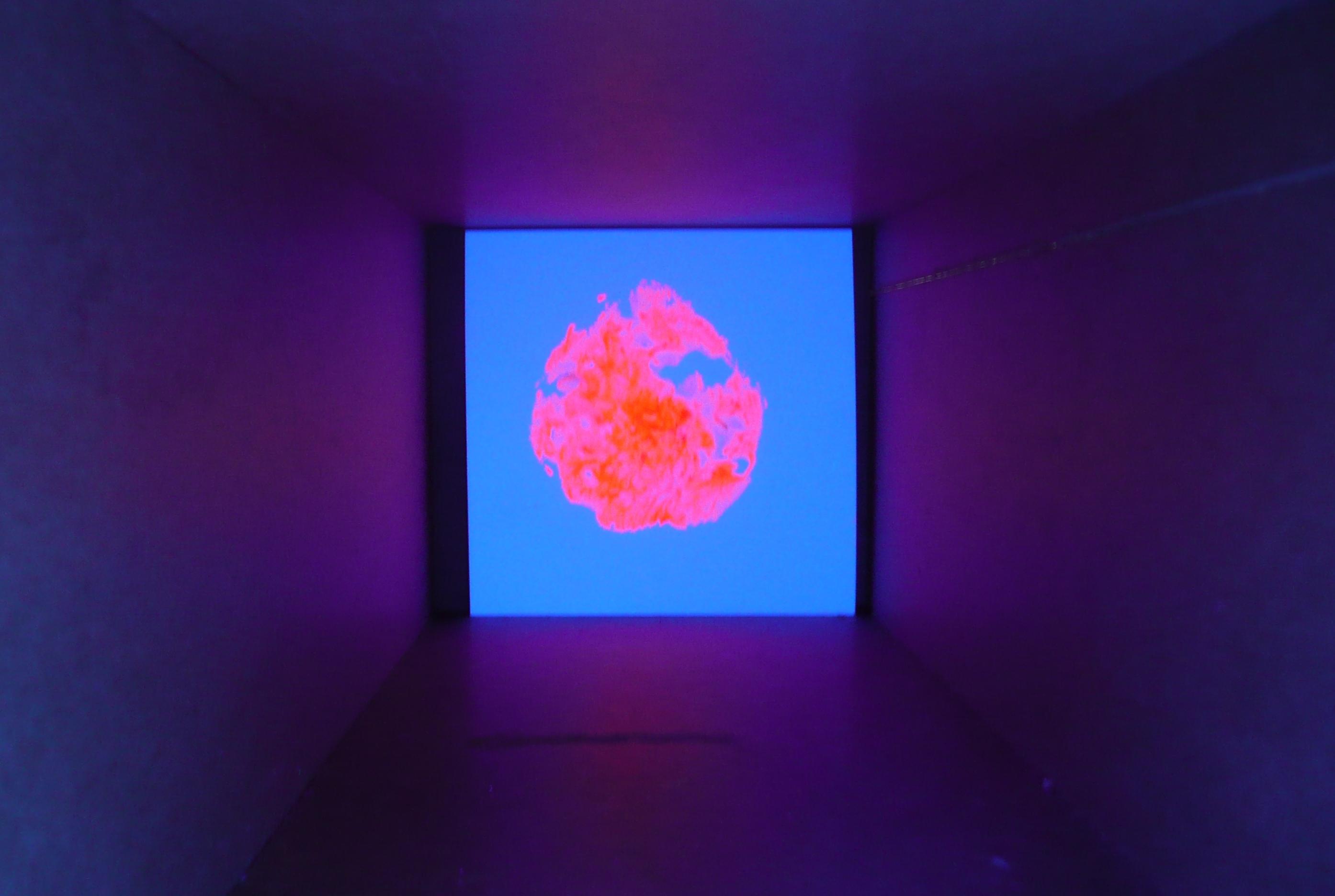 fluorescente-1_7845509488_o