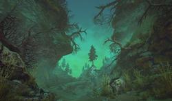 Forest_QuickBuild