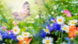 1519838-summer-flower-garden-wallpaper-1