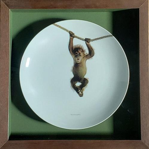 Funny Monkey - Emoldurado