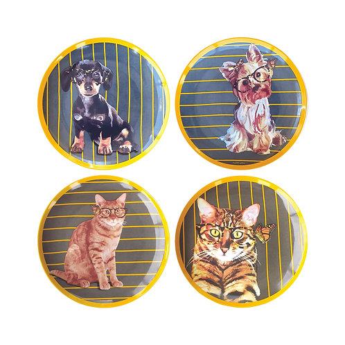 Conjunto Pets Geração 5 (4 peças)
