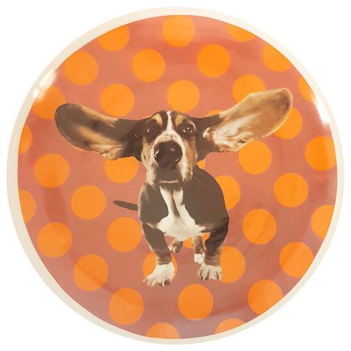 Ears dog