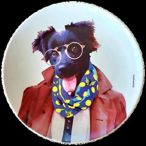 Fashion Dog 2