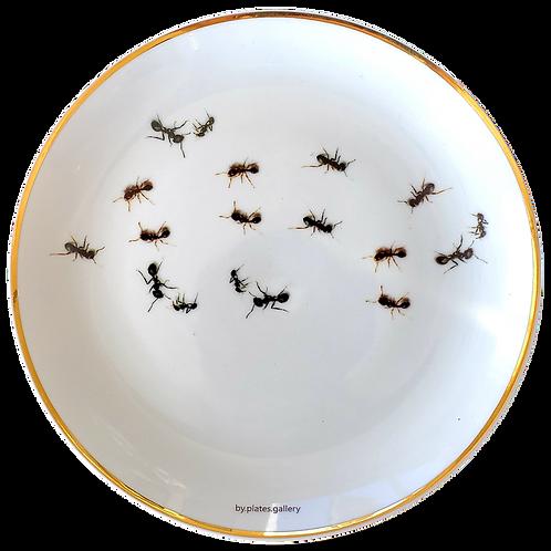 Formigas com Filete de Ouro