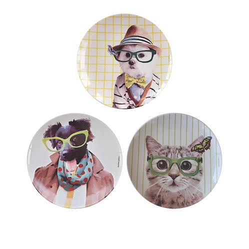 Conjunto Óculos Verde (3 peças)