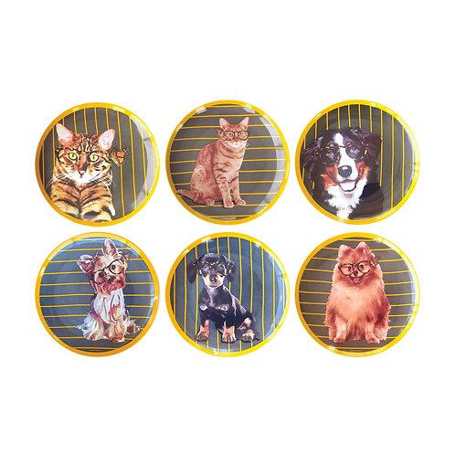 Conjunto Pets Geração 5 (6 peças)