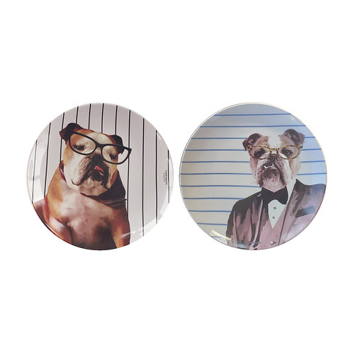 Conjunto Bulldogs (2 peças)