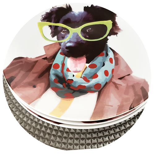 Conjunto Fashion Dog (3 unidades)
