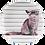 Thumbnail: Conjunto Gatos (6 peças)