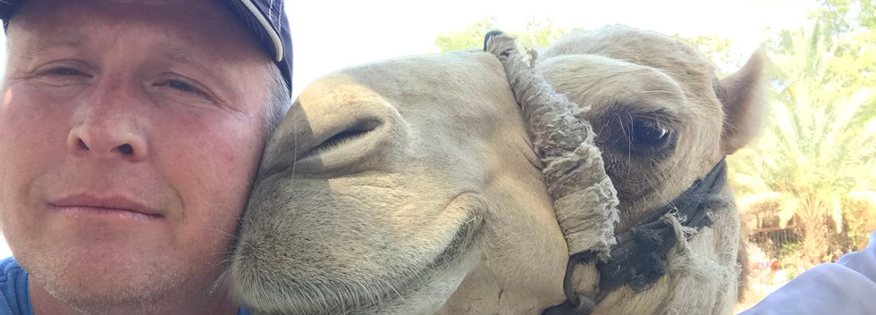 The camel looks happy!