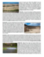 2021 page 3.jpg