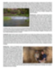 brochure page 3 12.10.19.jpg