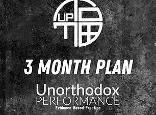 3 Month Plan.png