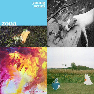 CHEZ'S TOP TEN ALBUMS OF 2016 for GRIZZLYGROUND