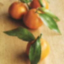 oranges 2.jpg