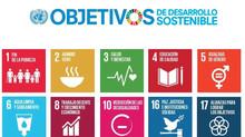 Objetivos de Desarrollo Sostenible - Nuevo Hogar Betania