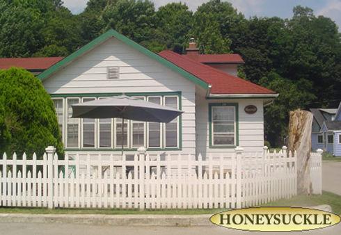 honeysuckle1.jpg