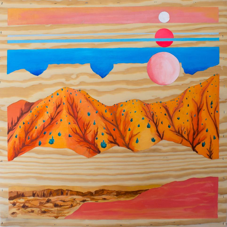 Capitol reef dunes