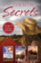 Country Secrets by Lizzy Chandler